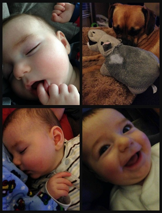 baby faces collage Photo Dump