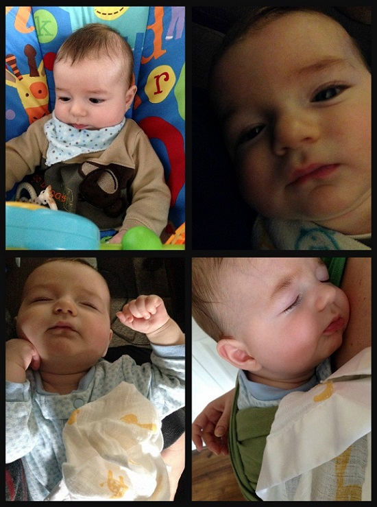 sleepy faces collage