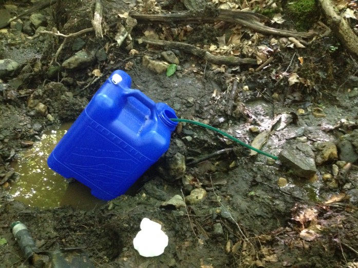 The creek water flows, gravity-fed, through an old sugaring line into a food-grade seven-gallon jug. Collecting creek water.