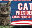 Cat President