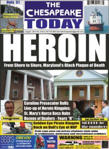 The Chesapeake Today August 2014 Click to purchase at AMAZON - Kindle Unlimited customers read for FREE!