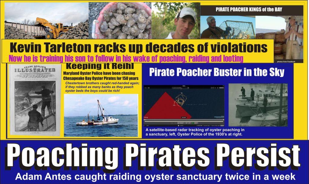 Adam Antes Poaching Pirate