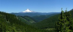 800px-Mt_Hood_Natl_Forest