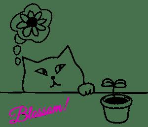 Blossom for Her Sake
