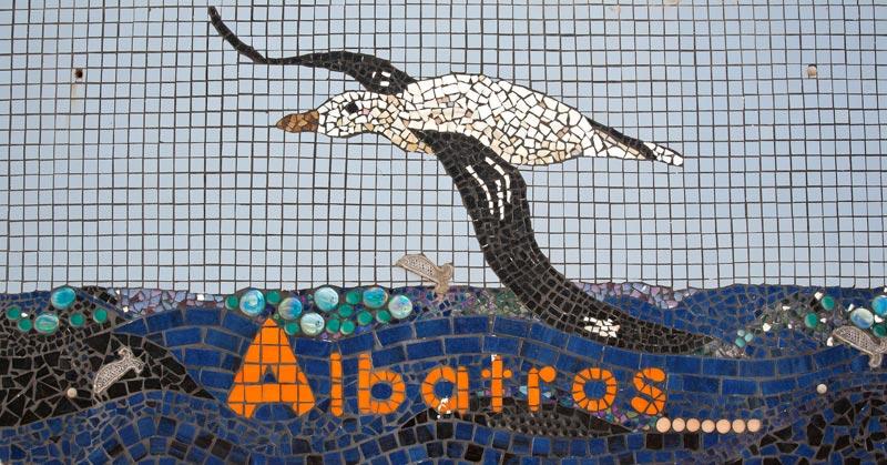 The Albatross Beach House