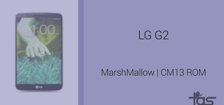 lg2gcm13