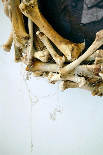 Cobwebs On Bone Frame