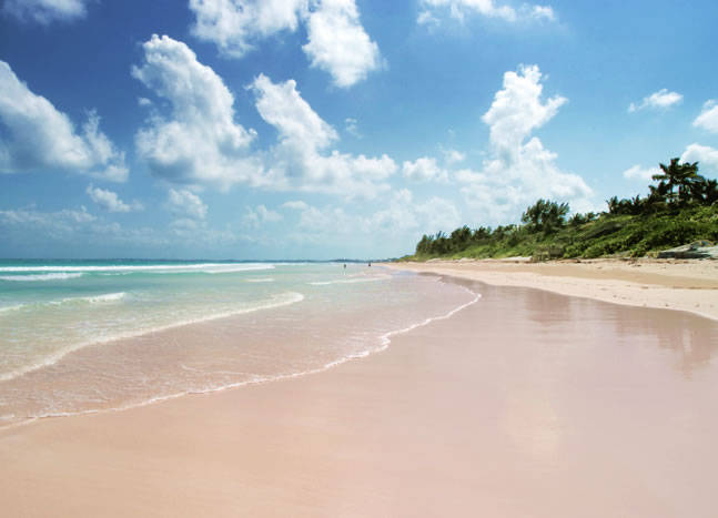 Pink Sands Beach Bahamas