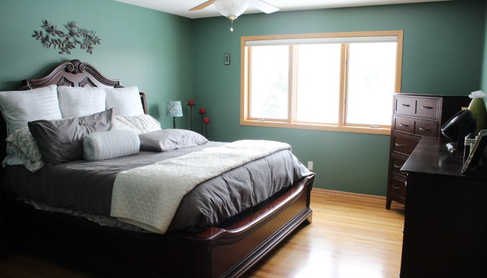 Surprise Master Bedroom Client Makeover