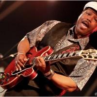26e Kwadendamme Blues Festival - Dag 1: een zonovergoten editie!
