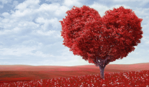 heart-feature
