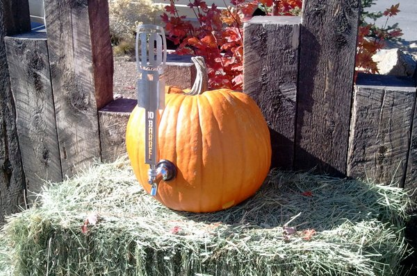 10 Barrel pumpkin beer tap