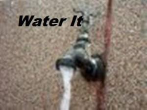 waterit