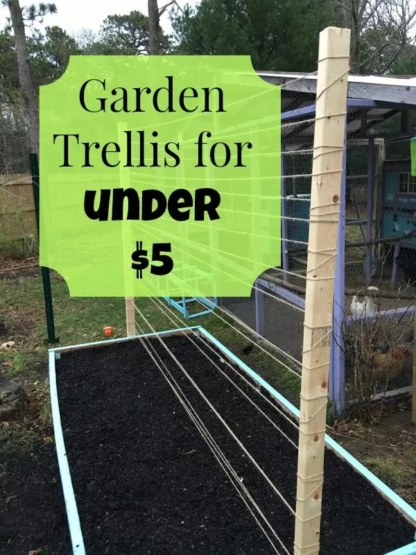 Raised Bed Trellis for Under $5