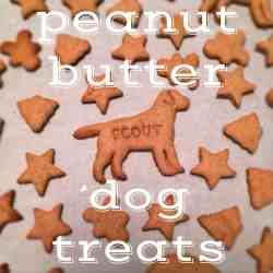Jolly Homemade Dog Treats Are Way To Show Your Pet That You Love Mlike Homemade Dog Treats Recipe Peanut Butter Dog Treats Gluten Grain Free Dog Treat Recipes Grain Free Dog Treat Recipes Peanut Butte