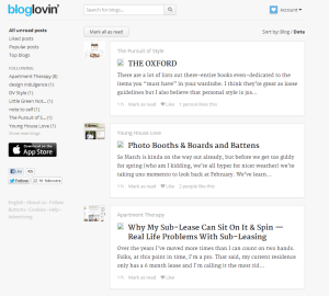 bloglovinexample