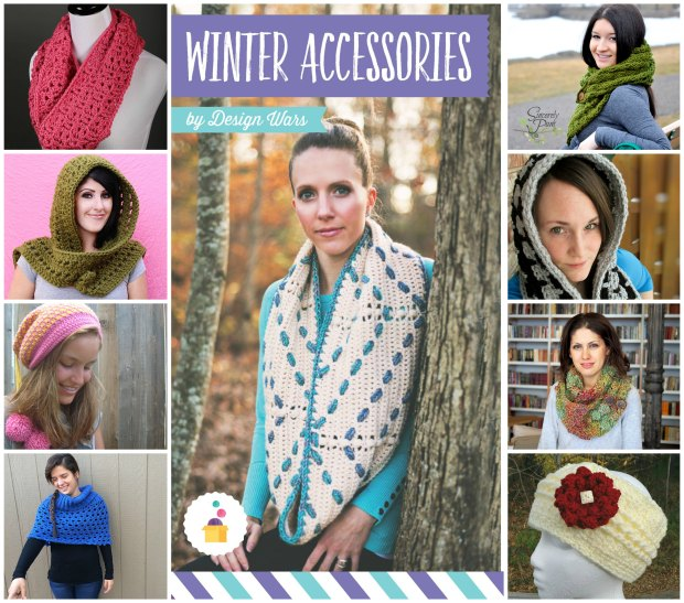 Design Wars Winter Accesories