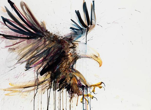 Dave-White-Eagle
