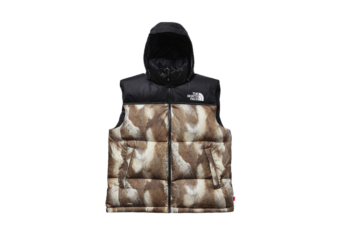 Supreme-The-North-Face-AW13-Outwerwear-10