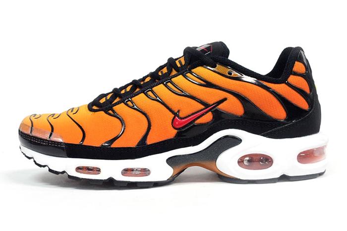 Nike Air Max Plus TN 001