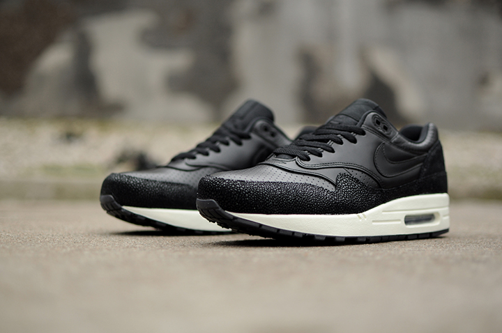 Nike Air Max 1 Leather PA Stingray 02