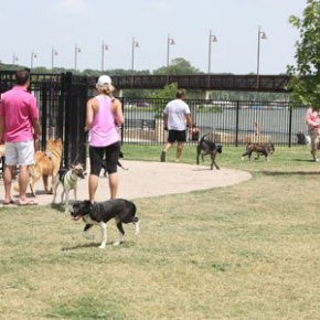 white rock dog park