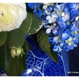 Anything Blue Friday – Week 113