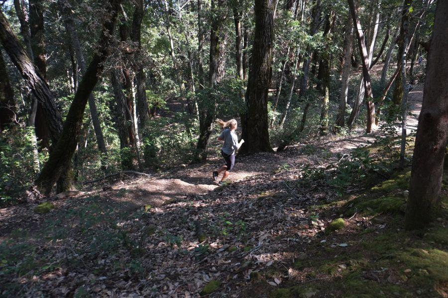 huddart-county-park-ultrarunning-50km (26)