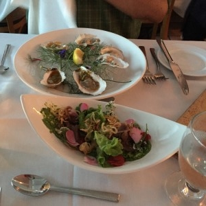 Oysters and salad.