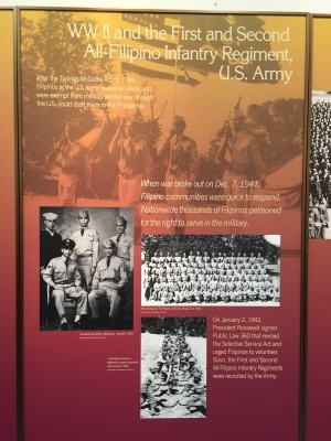 My father was part of the First All-Filipino Regiment, which saw action in New Guinea and the Philippines.