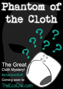 Phantom of the Cloth Diaper Mystery