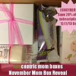 EcoCentric Mom Box Cyber Monday Coupon Code