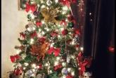Christmas Tree lighting at Christian Gosine's House