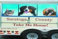 animal shelter photo_16-0818