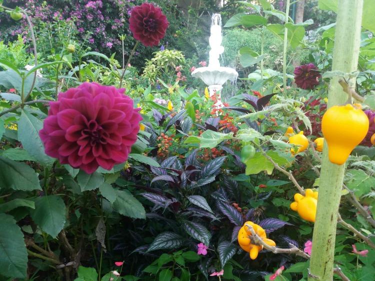Top 5 Spring Images, flowers, Sonya's Garden
