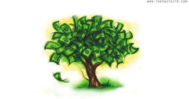 Money Tree - Wealth Statistics