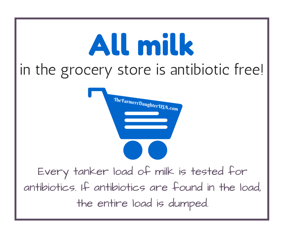 All milk