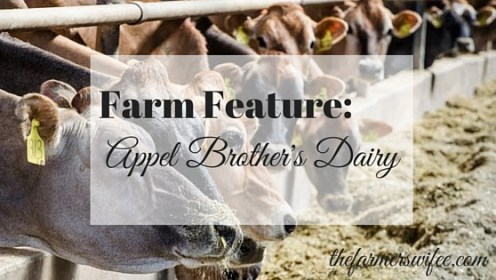 Apple Brothers Dairy