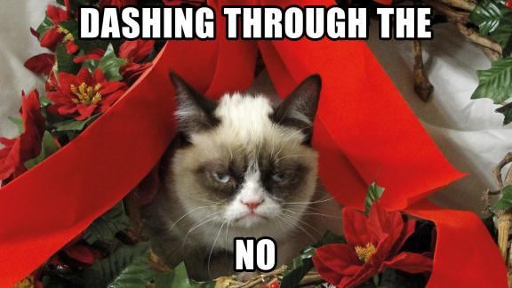 Image result for grumpy cat holiday no