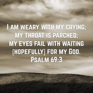 psalm 69-3