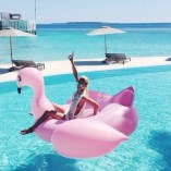 Giant Pink Flamingo- TFL2