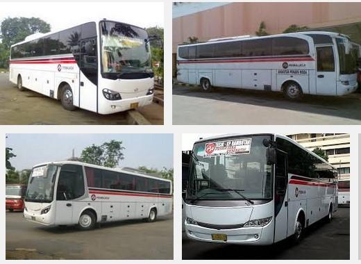 Tarif Harga, Rute serta Jadwal Bus Primajasa Juli 2016