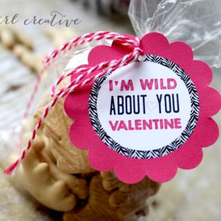 Zebra Valentines