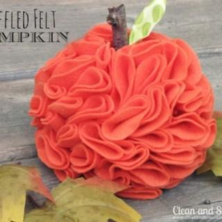feature-felt pumpkin
