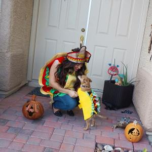 Taco y Taco Its a PetcoHalloween! Have you guys enteredhellip