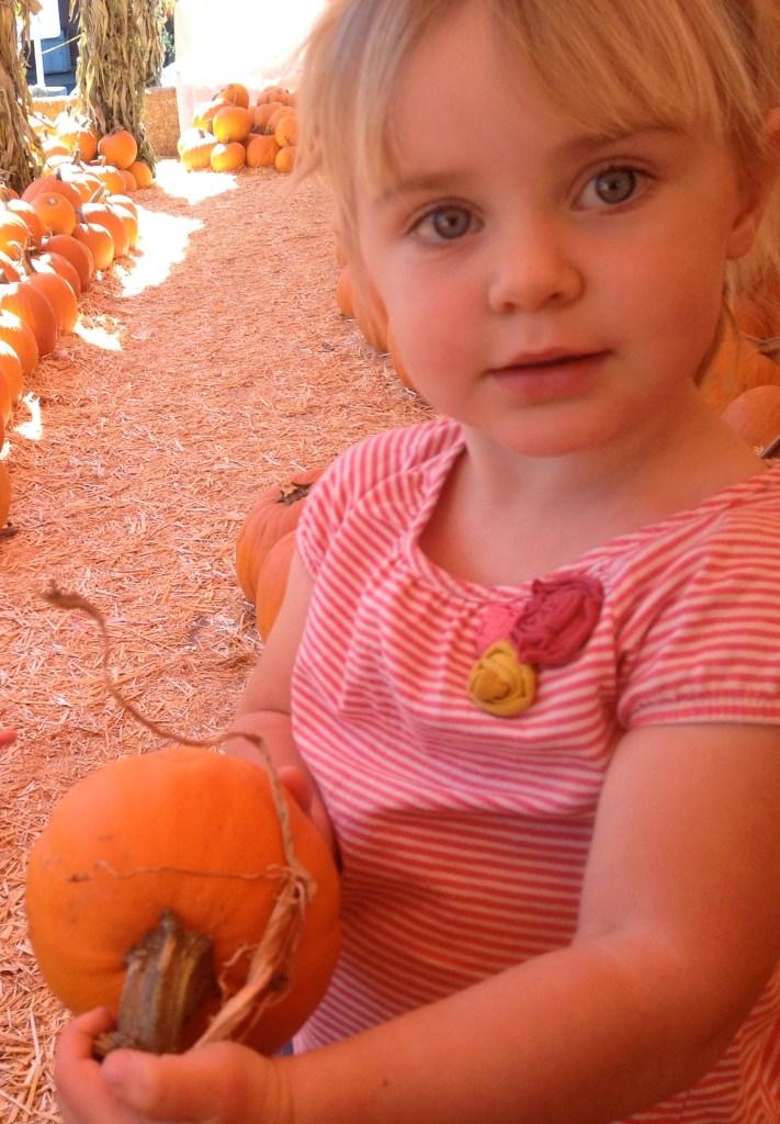 Fall Theme