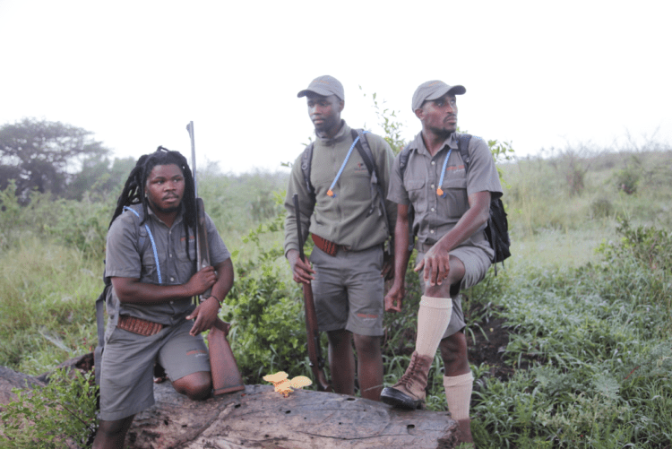 SOUTH AFRICA : Rhino trcakers (left to right) Nunu, Simanga and Sifiso