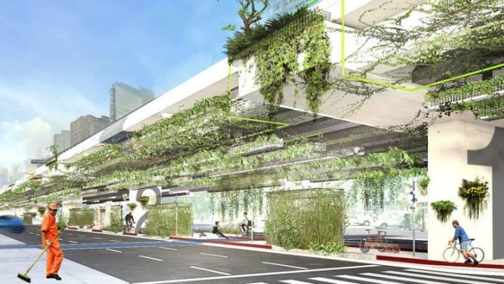 Projeto quer cobrir bordas do Minhocão com trepadeiras para esverdear a cidade