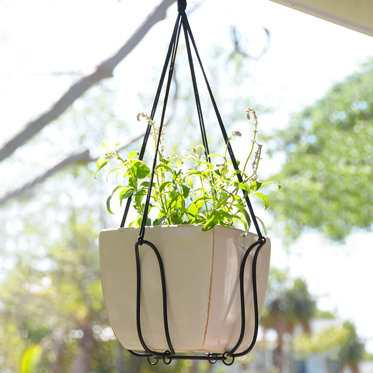 Salient Adjustable Plant Hanger Turns Almost Any Pot Into A Hanging Planter Adjustable Plant Hanger Turns Almost Any Pot Into A Hanging Metal Garden Plant Hangers Garden Wall Plant Hangers garden Garden Plant Hangers