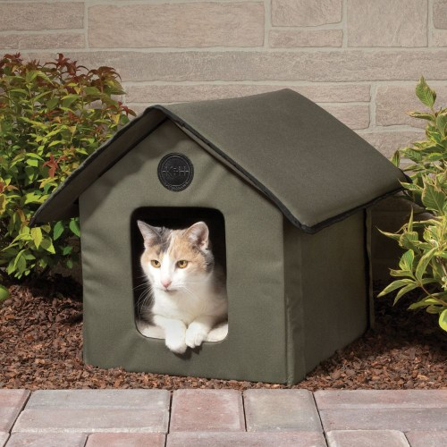 Medium Crop Of Outdoor Cat House
